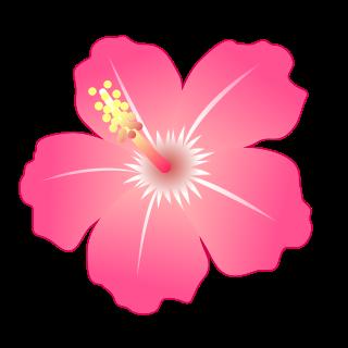 Hibiscus Emojidex Custom Emoji Service And Apps